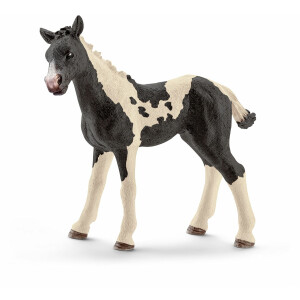 Schleich - World of Nature - Farm Life - Pferde - Pinto...